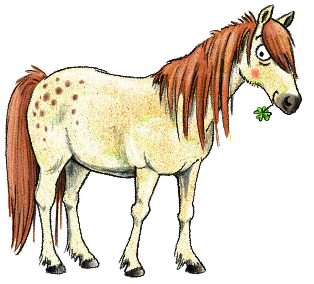 Pony Zeichnung